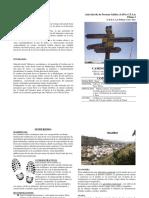 AAPA - Camino Valleseco-Teror - Dic 2019