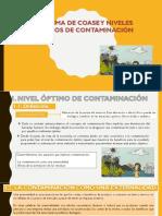 3_TEOREMA DE COASE Y NIVELES ÓPTIMOS DE CONTAMINACIÓN