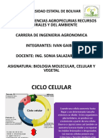 Biologia Expo 1