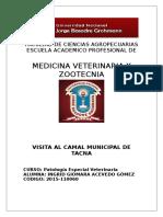 CAMAL.doc