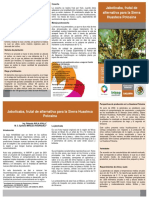 Jaboticaba Frutal de Alternativa Para La Sierra Huasteca Potosina