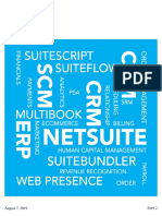 netsuite guide