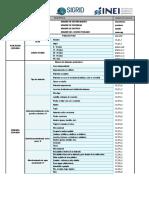 Diccionario_datosCPV2017INEI