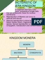 MONERA 4