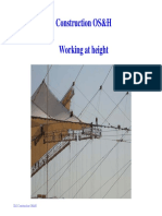 wcms_161903.pdf