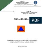 Atributiile si functionarea celulei    de urgenta (2)