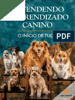 CCOMPRENDER EL CONOCIMIENTO.docx