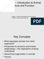 8 - Animal Structure and Function before.ppt