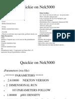 Nek5000.pdf