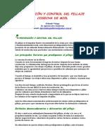 58241895-PREVENCION-Y-CONTROL-DEL-PILLAJE.pdf
