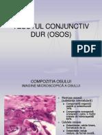 72177534-Tesutul-Conjunctiv-Dur-Osos.ppt