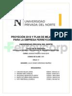 PROYECIÓN 2019 Y PLAN DE MEJORA 2019 PARA LA EMPRESA FERREYCORP SAA
