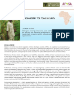 Food_Security_Malawi.pdf
