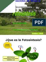 Fotosiintesis 2019