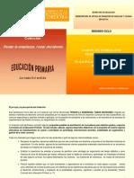 PLANIFICACION Y DESARROLLO DIDACTICO CAMPO DE FORMACION EDUCACION FISICA Plan anual