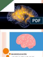 Material Neuroeducación-1.pdf