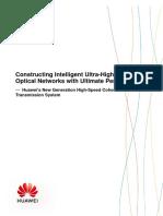 OptiXtreme oDSP - Introduction Concepts.pdf