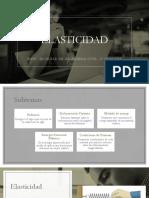 ELASTICIDAD-diapositivas