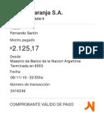 resumen-1573264576.pdf