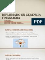 Analisis e Indicadores Financieros