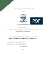 Norma penal en blanco.pdf