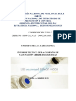 INFORME TECNICO CAMPAÑA CIERRE ESQUEMAS 2019 UAC