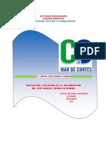 Cuadro_Sinóptico_Educación_Cultura_GlobalizaciónEruin_JoséZuñiga_Cubides Colombia.docx