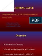 Information on Flail Mitral Valve