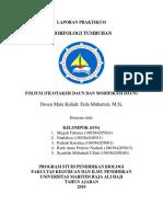 Laporan pratikum Daun(Folium)