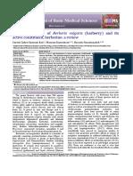 Toxicology_effects_of_berberis_vulgaris_Barberry_a.pdf
