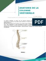 Anatomie de La Colonne Vertebrale Ok
