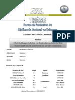 02-13-462.pdf