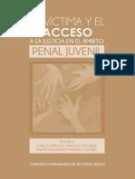 victima_acceso_justicia