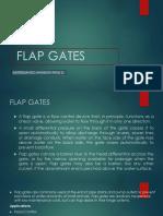Flap Gates