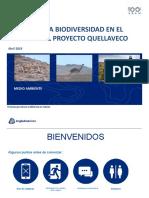 Gestión de La Biodiversidad AAQ
