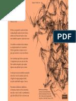 Poema ''Legião de Pernilongos'', De Darlan Zurc