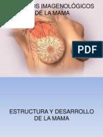 MAMOGRAFIA Y Esteroataxia_1