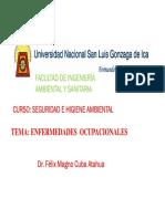 1.0 ENFERMEDADES PROFESIONALES.pdf