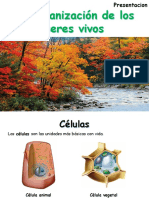 NS5_and_org_liv_things_presentacion español