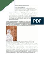 articulo acupuntura e historia