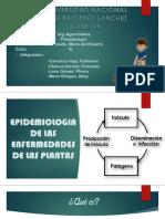 Fitopatología Epidemiologia de Las Plantas
