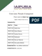 REPORT ON JAIPUR RUGS