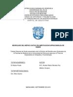 Tesis Andres Morales I, II, II y IV Capitulo 16-07-19