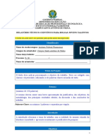 Modelo de Relatório Parcial e Final - JT (1)