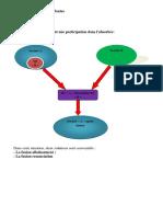 participation simple PPT.docx