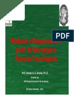 Biodiesel e Bioquerosene a partir de Microalgas e Avanços Tecnológicos