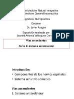 ductus omphaloentericus persistens