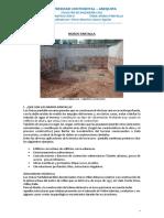 Monografia Muro Pantalla