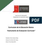 Jiménez Silvia Intrumento de Análisis Curricular