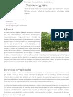 Chá de Nogueira – Propriedades e Benefícios _ trocandofraldas.com